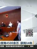 闵行区原副巡视员张有为受贿4500余万 获刑14年